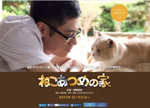 nekoatsume-movie.com