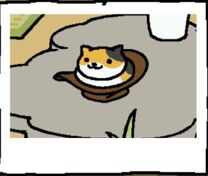 みけさん帽子